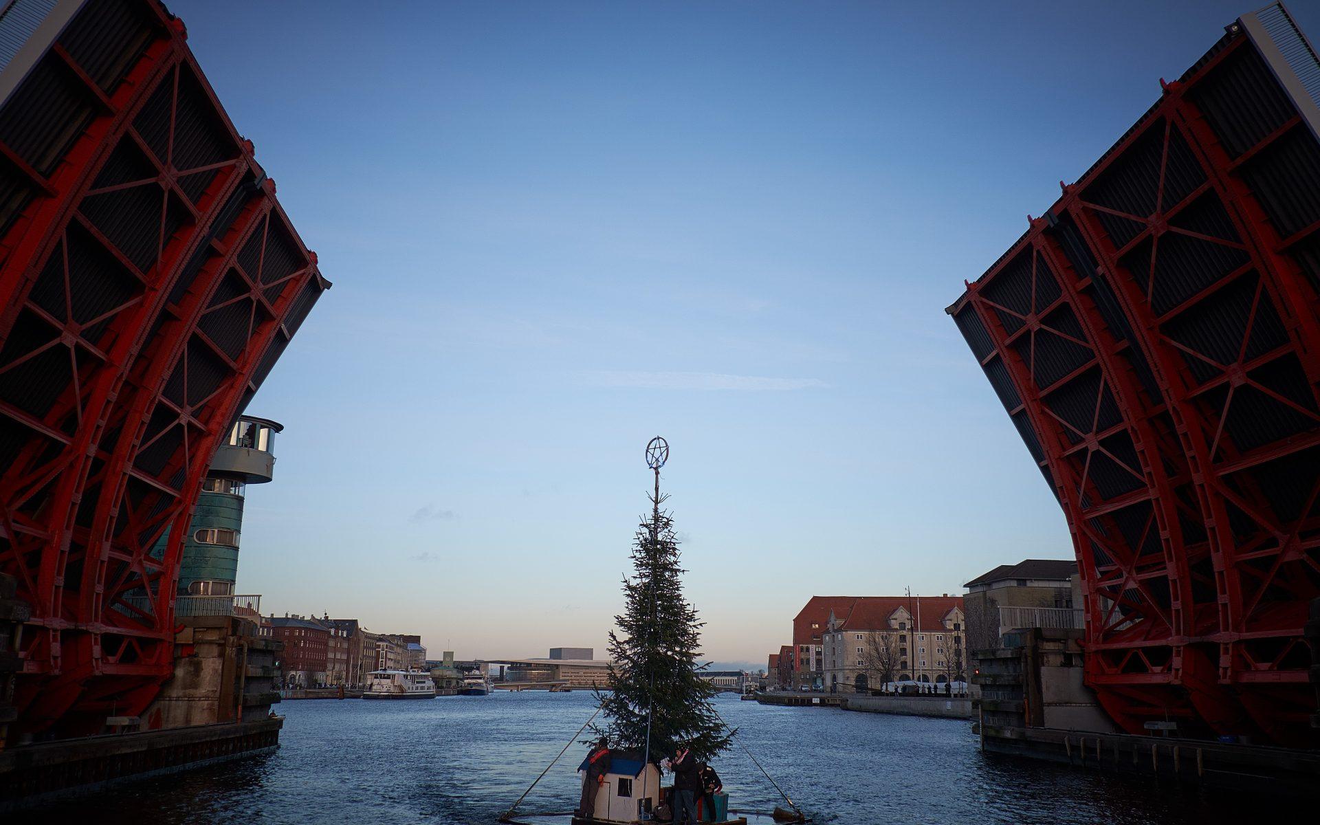 kulturhavn365_flydende-juletrae01