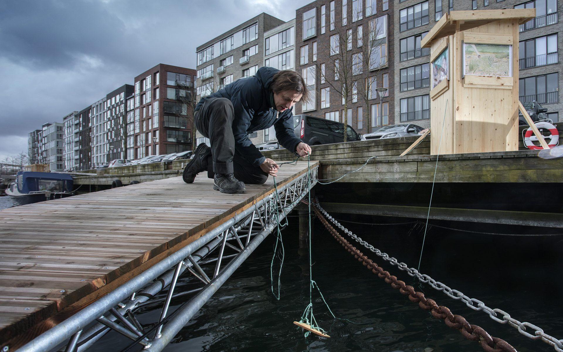 kulturhavn365_undervandskameraer-i-havnen03_new
