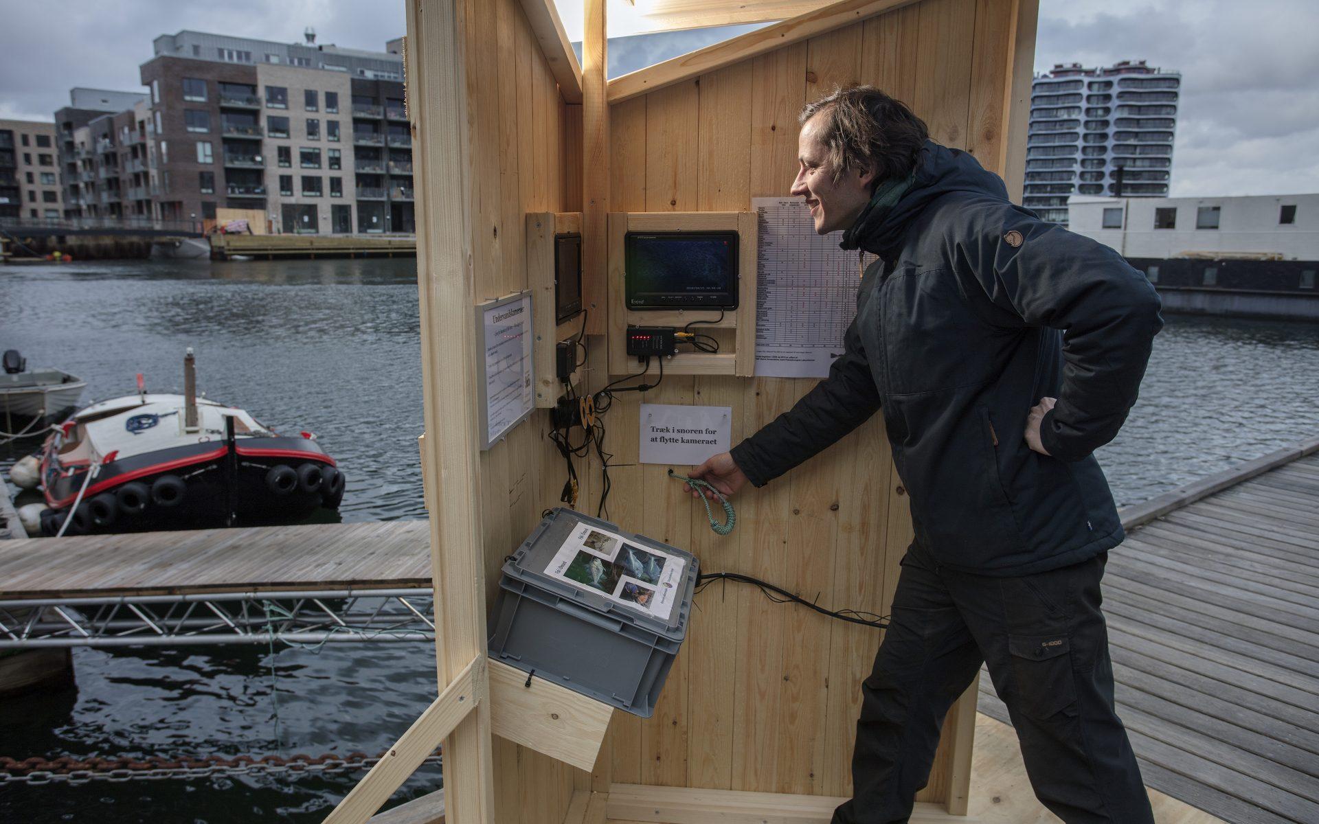 kulturhavn365_undervandskameraer-i-havnen04_new