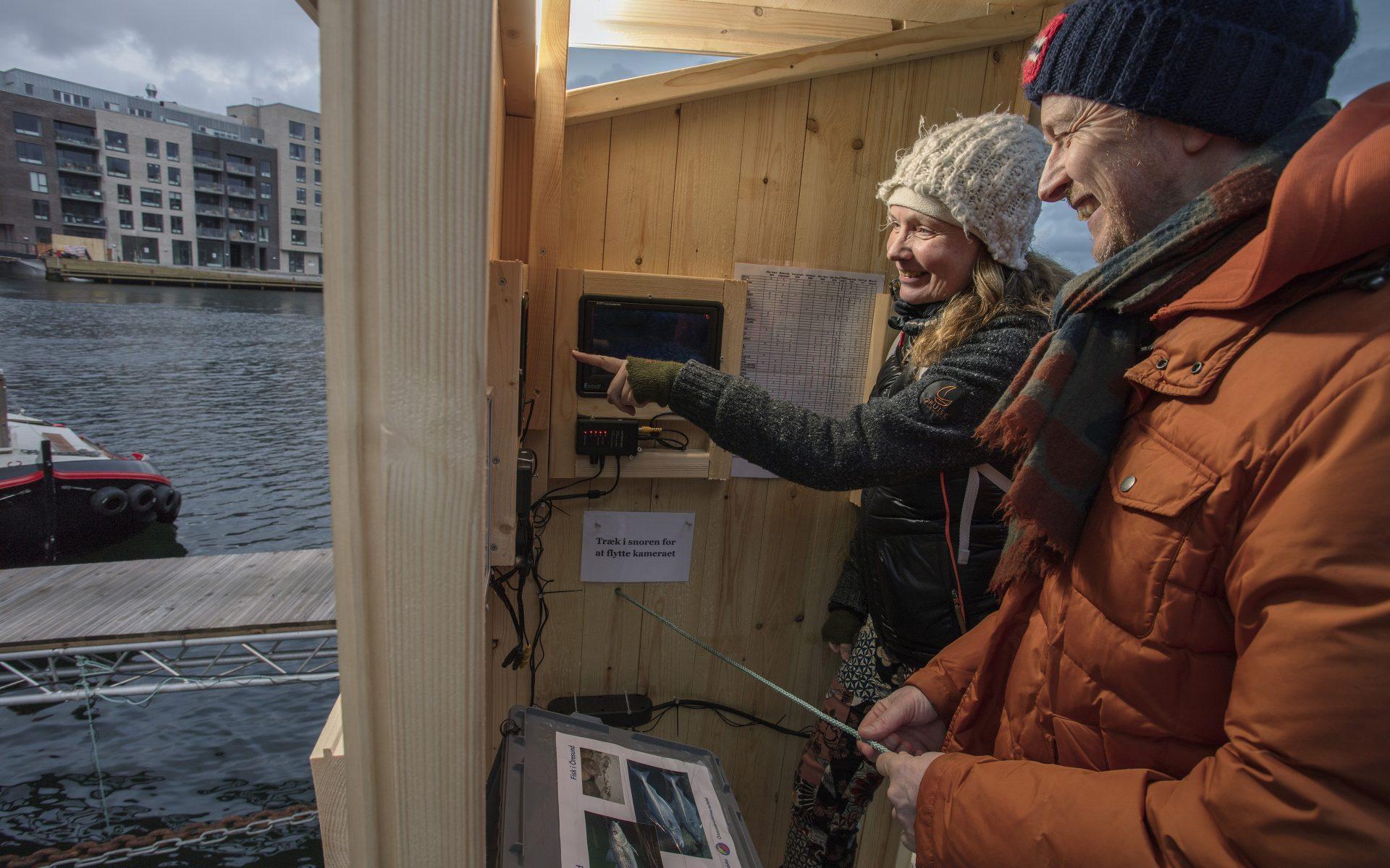 kulturhavn365_undervandskameraer-i-havnen06_new