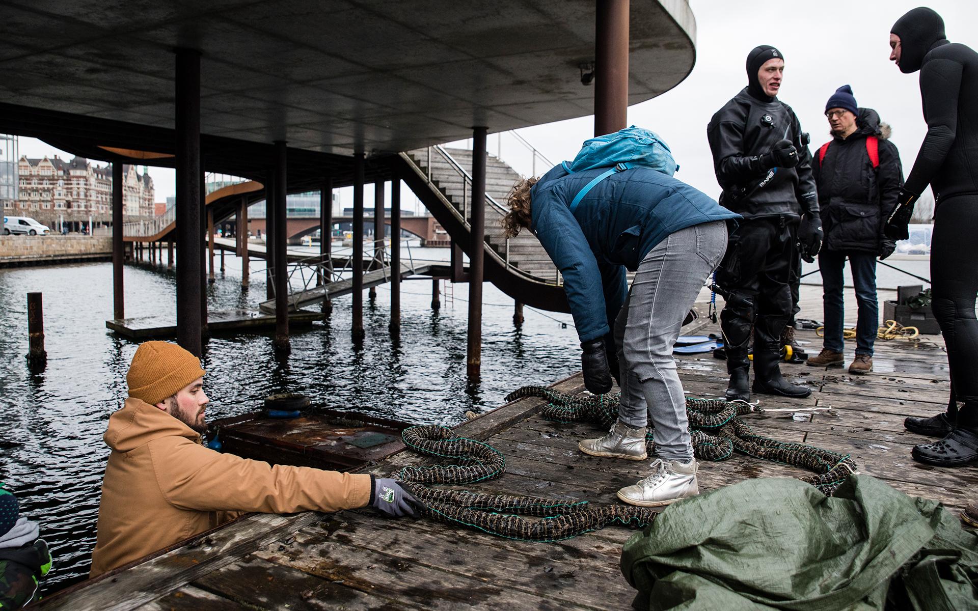 kulturhavn365_havbonde-for-en-dag09
